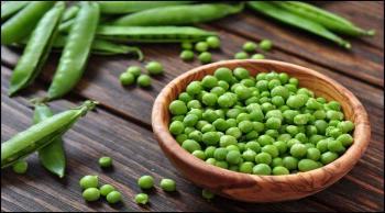 للبازلاء الخضراء فوائد صحية جمّة  ..  تعرف إليها