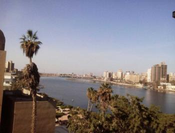 مصر  ..  أنباء عن خروج تمساح من النيل و الأهالي في حالة رعب