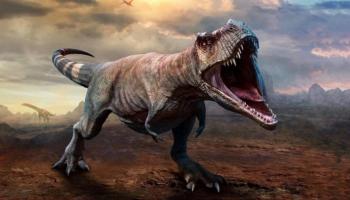 دراسة تكشف أعداد تيرانوصور ركس التي عاشت قبل 66 مليون عام