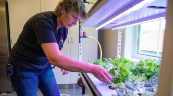 في سجن نرويجي للنساء ..  تعليم وحديقة خضراء وطعام خاص