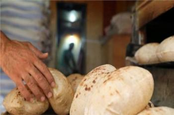 مطلوب شراء خبز طازج