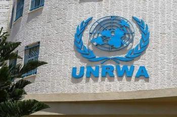 الأونروا تناشد للحصول على 1.5 مليار دولار لدعم اللاجئين