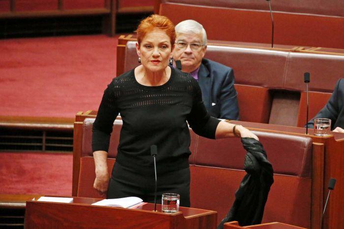 برلمانية أسترالية ترتدى البرقع في البرلمان (فيديو)