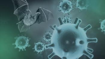 علماء يكتشفون 24 نوعاً من كورونا لدى الخفافيش