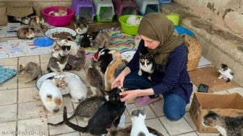 مغربية تحول منزلها إلى مأوى للقطط