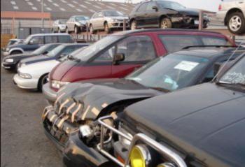 نواب يطالبون بتمديد مدة قرار سيارات الـالسالفج