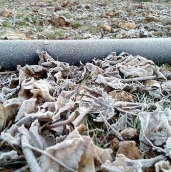 الأرصاد: أجواء شديدة البرودة وصقيع مساء الجمعة
