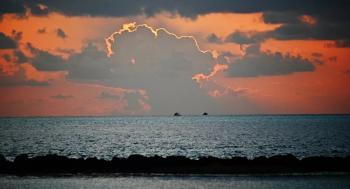 رجل يلقي ابنه في البحر للحصول على أموال التأمين