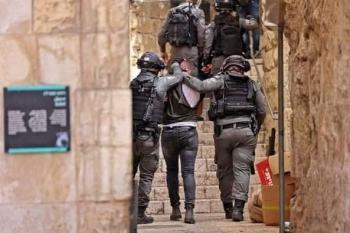 المرصد العربي لحقوق الإنسان يطالب مجلس الأمن بالتدخل