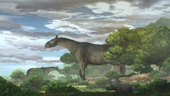 اكتشاف بقايا وحش عملاق جاب الصين قبل 26 مليون سنة