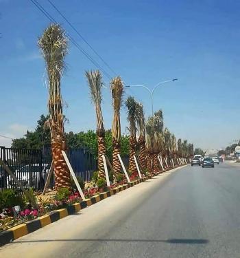 لفتة من جامعة عمان الأهلية ..