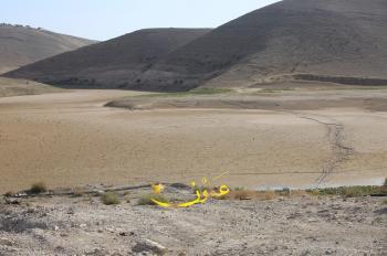 2000 دونم خضار وأشجار مثمرة ..  مزارعون يطالبون بانقاذ محاصيلهم بعد جفاف الوالة