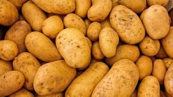 علماء يكشفون أهمية تناول البطاطا للمصابين بالسكري