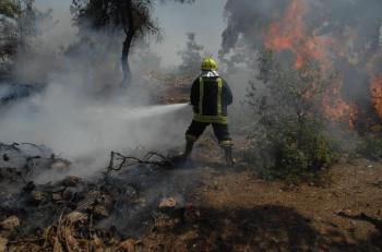 95 حريقا في الأردن خلال 24 ساعة