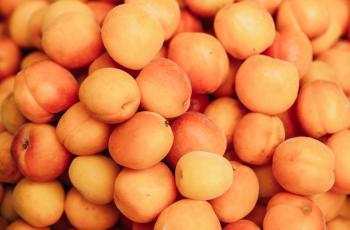 6 فوائد لفاكهة المشمش