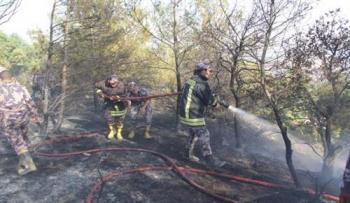 الدفاع المدني يحذر من اشعال النيران في الغابات