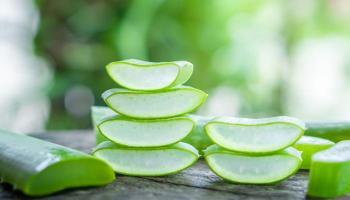 هلام الصبار ..  9 فوائد للصحة والبشرة