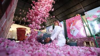 مدينة الورود السعودية تزدهر في شهر رمضان