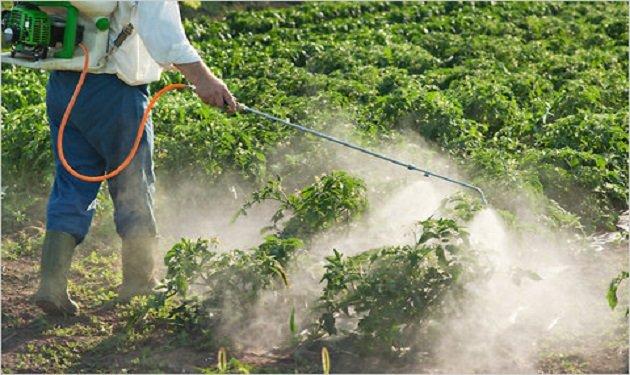 مطلوب القيام بمكافحة الحشرات والقوارض في مرافق شركة مياه العقبة