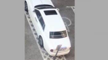 لماذا خالفت شرطة دبي السيارة الشهيرة حاملة الرقم 5؟
