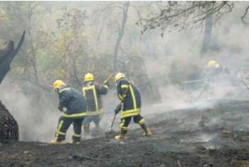 الاغوار الجنوببة: فرق الدفاع المدني تخمد حريقا شب في 70 دونما