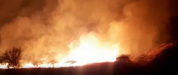 حريق في منطقة سد شرحبيل (فيديو)