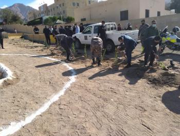 شرطة العقبة تغرس 300 شتلة بمناسبة عيد الشجرة