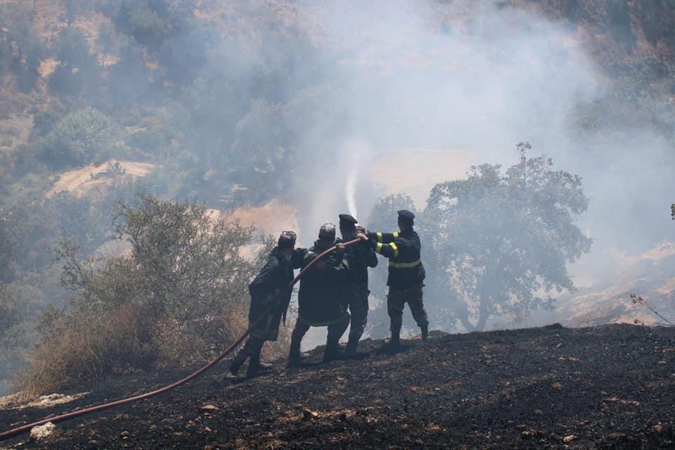 اخماد حريق أتى على 40 دونما في وادي السير
