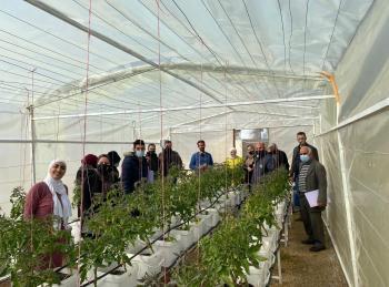 اختتام مشروع تعزيز الأمن الغذائي من خلال أنظمة الزراعة الحضري