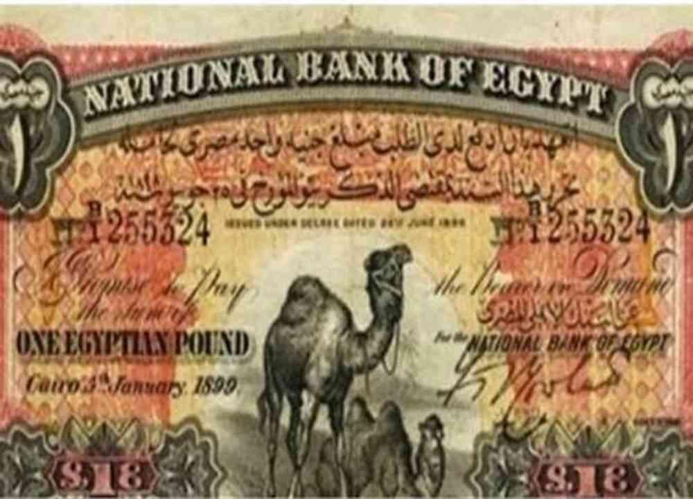 هل تمتلك الجنيه أبو جملين ..  جنيه مصري واحد ثمنه مليون جنيه