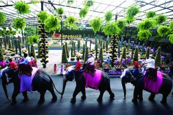 عيد الحب في تايلاند: زفاف جماعي على ظهور الأفيال