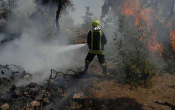 44 حريقا في الأردن خلال 24 ساعة