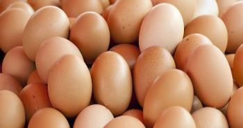 حملة لمقاطعة البيض والبطاطا