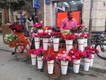 مصر ..  تاجر السعادة من نجَّار إلى بائع زهور