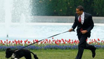 أوباما ينعى كلبه بو (صور)