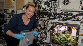 رواد الفضاء يحصدون الفجل على متن المحطة الفضائية الدولية