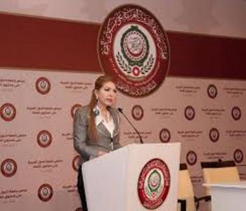علاء الدين: توافق عربي على قضايا اقتصادية مشتركة