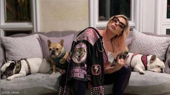 بعد جائزة النصف مليون دولار ..  ليدي غاغا تستعيد كلبيها