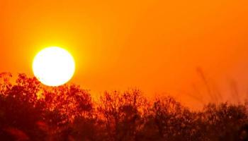 تشرين ثاني 2020 الأكثر حرا في العالم