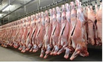الأردن يسمح باستيراد اللحوم من الباكستان
