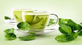 الشاي الأخضر يحمي من فيروس شديد العدوى