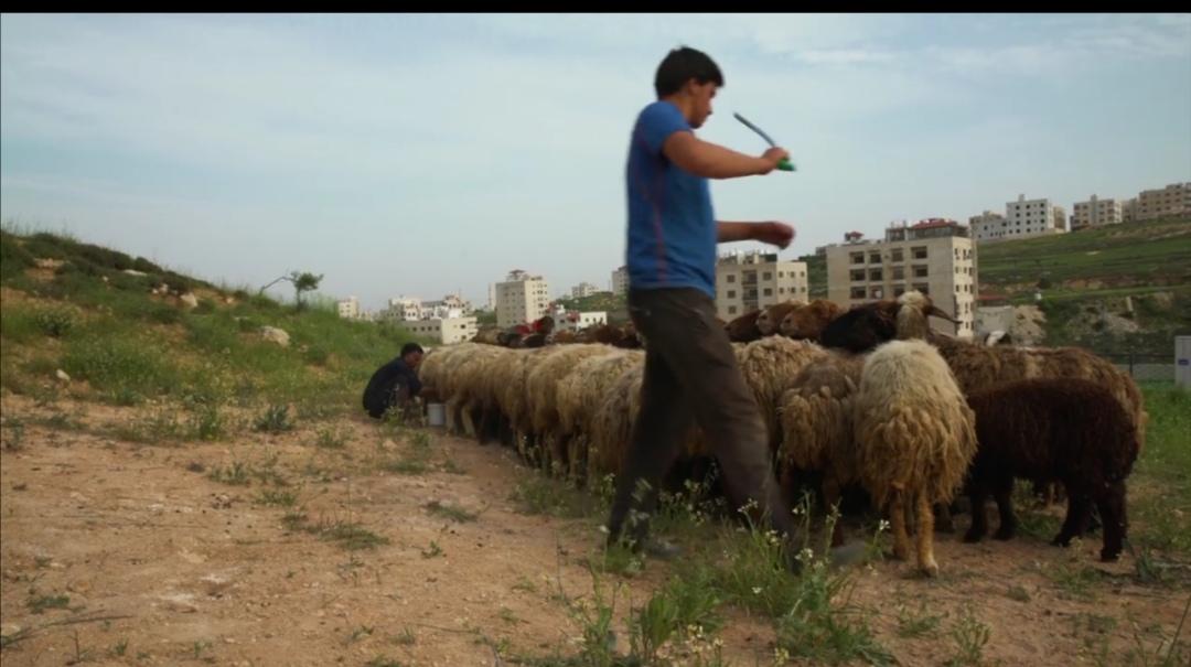 المنايح اول فيلم وثائقي اردني يرشح لتقييم عالمي