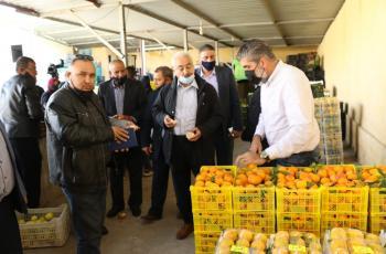 داودية: السقوف السعرية ظلم كبير للمزارعين