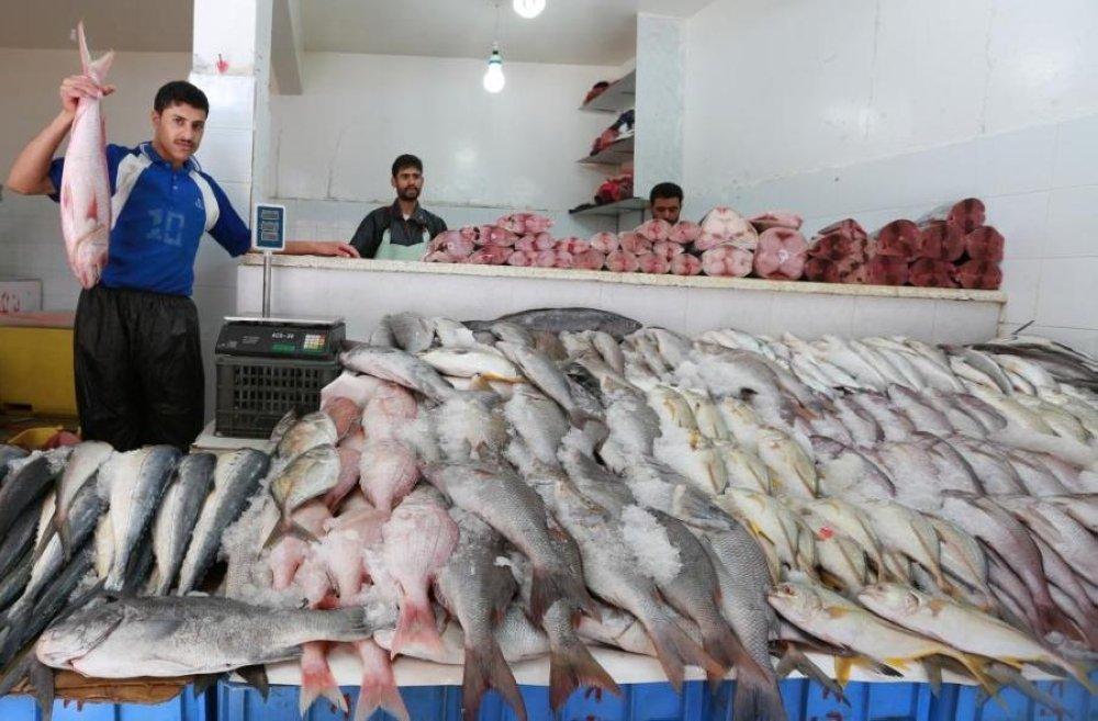 فرض رسوم على صادرات الأسماك المصرية للأردن