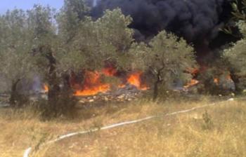 حريق أشجار مثمرة واعشاب جافة في جرش