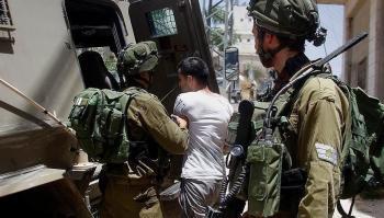الاحتلال يعتقل 11 فلسطينيا