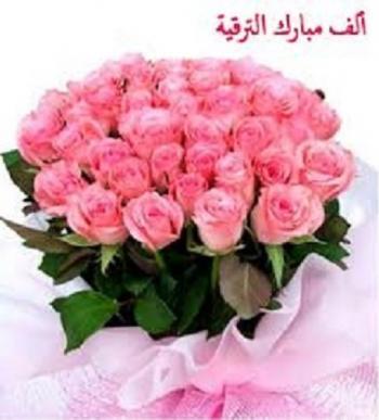 عامر الحباشنه  .. مبارك الترقية
