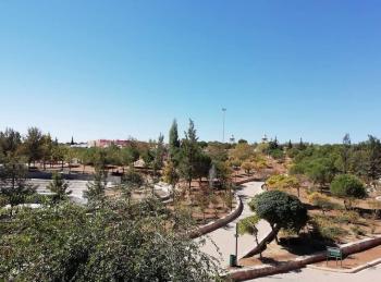 إغلاق حدائق الحسين يوم الثلاثاء من كل أسبوع