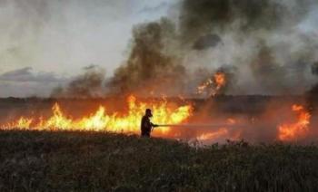 104 حرائق في الأردن خلال 24 ساعة