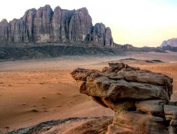 هل تصبح صحراء الأردن والخليج العربي أراض خضراء وغابات؟